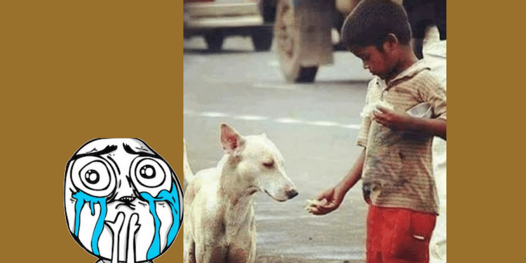 Small homeless kid helping Dog - Viral Pics of Helping People