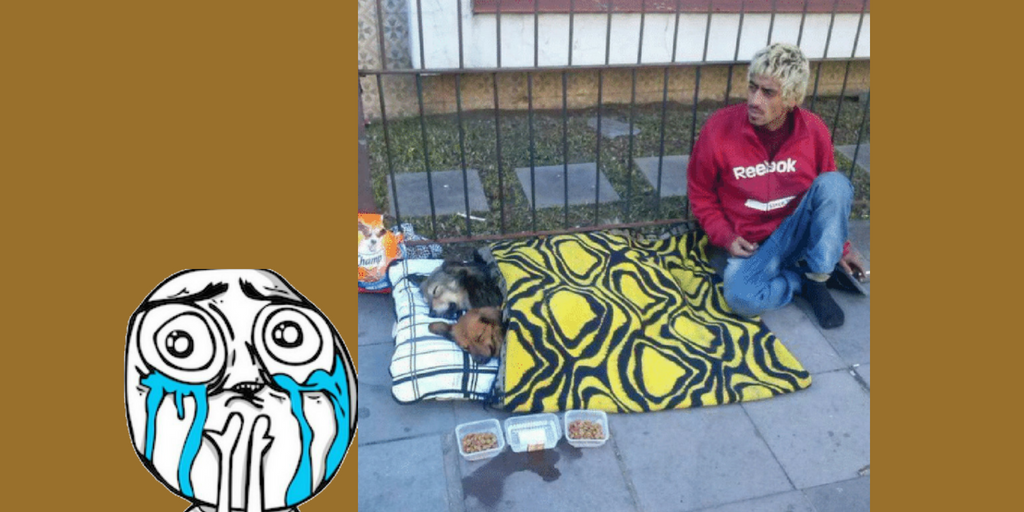 Animals sleeping with Homeless man  - Viral Pics of Helping People