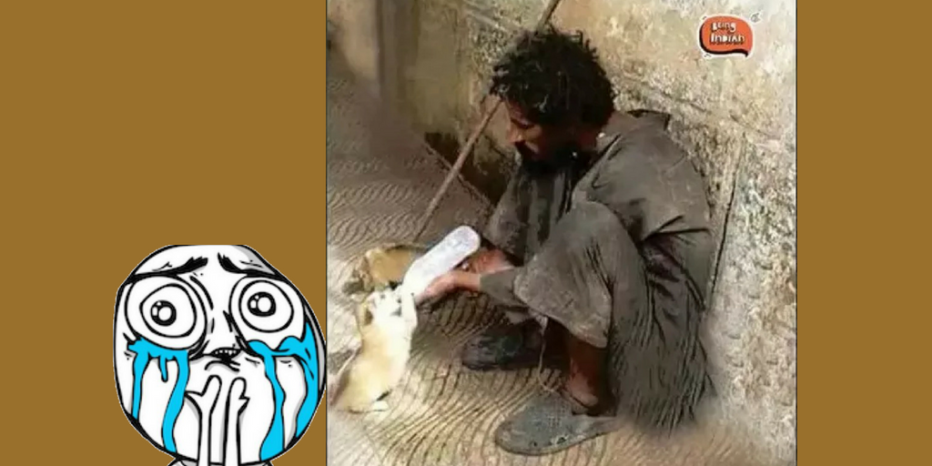 Beggar feeding milk to puppy  - Viral Pics of Helping People