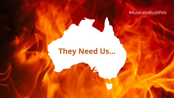 Donate To Australia Bushfires - Here's How You Can Help Animals (1)