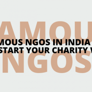 Famous NGOs in India to Kickstart Your Charity Work